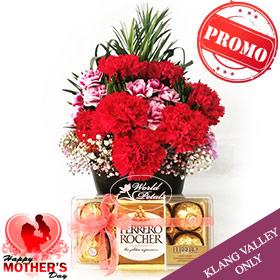 Elegance Carnations